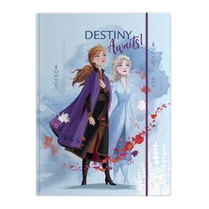 Carpeta C/Liga Carton Frozen Dg