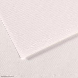Cartulina Mi-Teintes 160G 50X65 Blanco